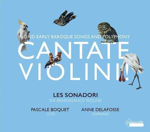 Cantate Violini!