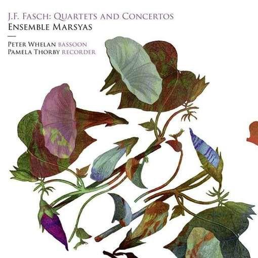Fasch: Quartets & Concertos