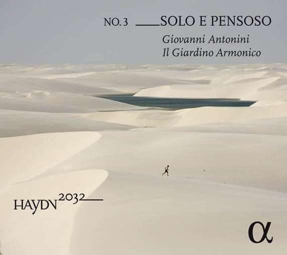 Haydn: Solo e Pensoso