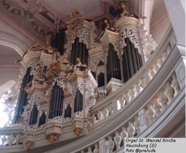 Over een opkomende depressie en de hulp van Bach