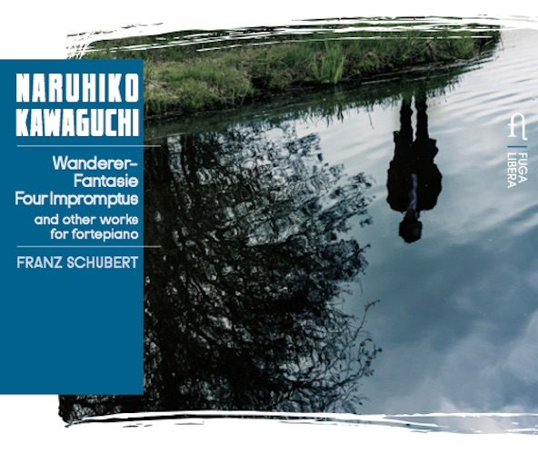 Schubert: Wanderer-Fantasie, Four Impromptus and other works for fortepiano