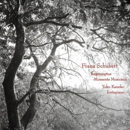 Schubert: Impromptus – Moments Musicaux