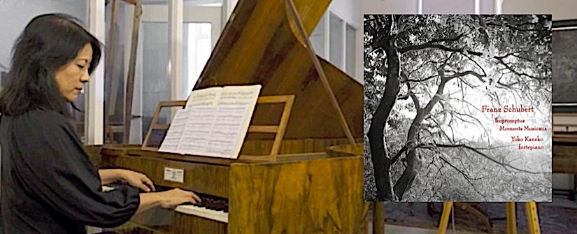 Preludes Gids-cd: Schubert in alle opzichten hemels